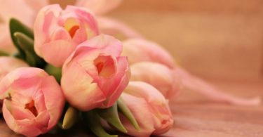 Mothers day Gifts on an Budget