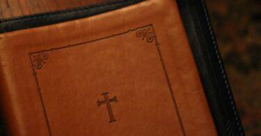 5 Great Bible Studies for Christian Women